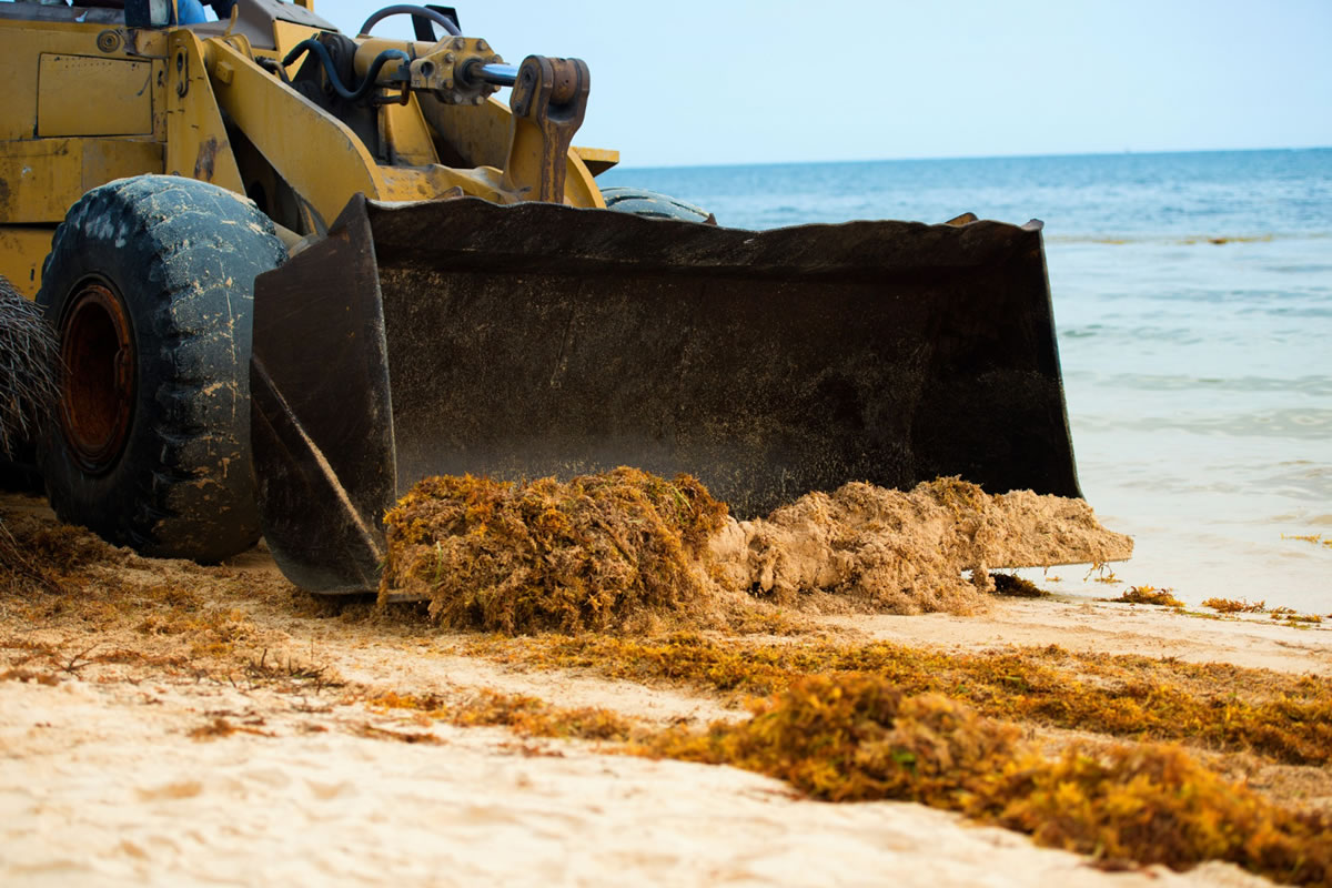 Five Costs Associated with Land Development in Flagler Beach